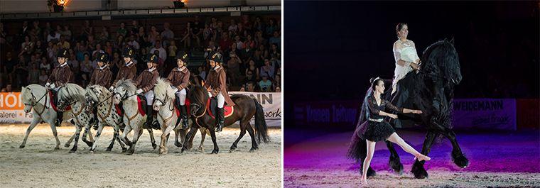 Großer Erfolg für Österreichs beliebteste Pferdefachmesse